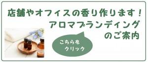 youbox-branding